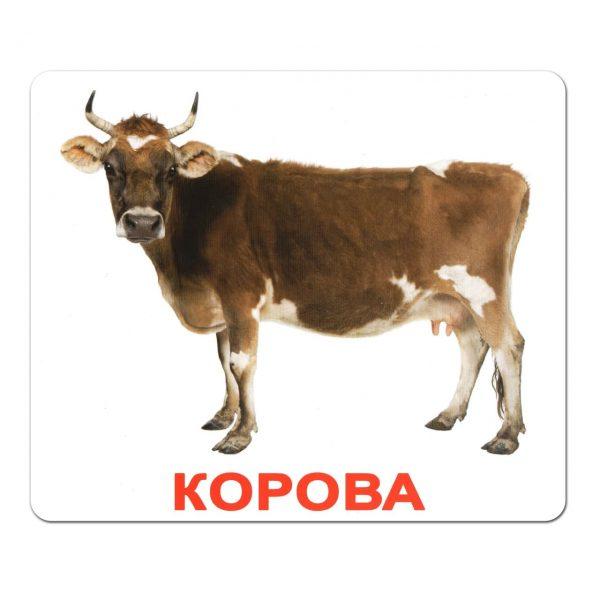 Картки Домана Свійські тварини