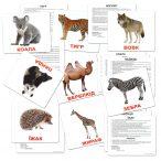 Картки Домана Дикі тварини