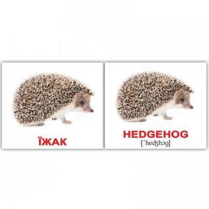 """Мини-карточки Домана """"Дикие животные/Wild animals"""" на укр/англ."""