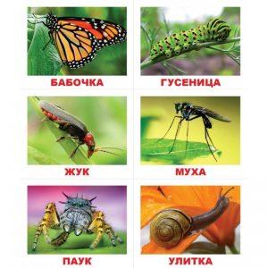 "Карточки Домана Лото ""Животные"" на рус."