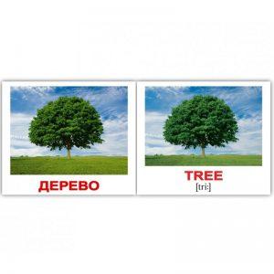 "Мини-карточки Домана ""Природа/Nature"" на рус/англ."