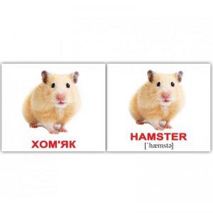"""Міні-картки Домана """"Свійські / Domestic animals"""" українською/англійською"""