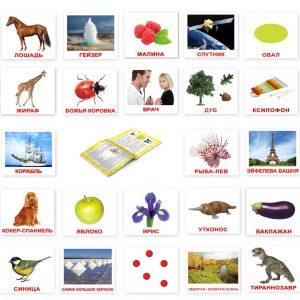 """Подарочный набор карточек Домана """"МЕГА чемодан Вундеркинд с пелёнок"""" на рус."""