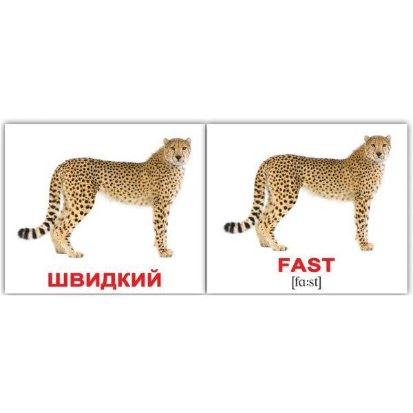 """Мини-карточки Домана """"Прилагательные/Adjectives"""" на укр/англ."""