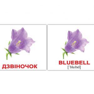 "Мини-карточки Домана ""Цветы / Flowers"" на укр/англ."